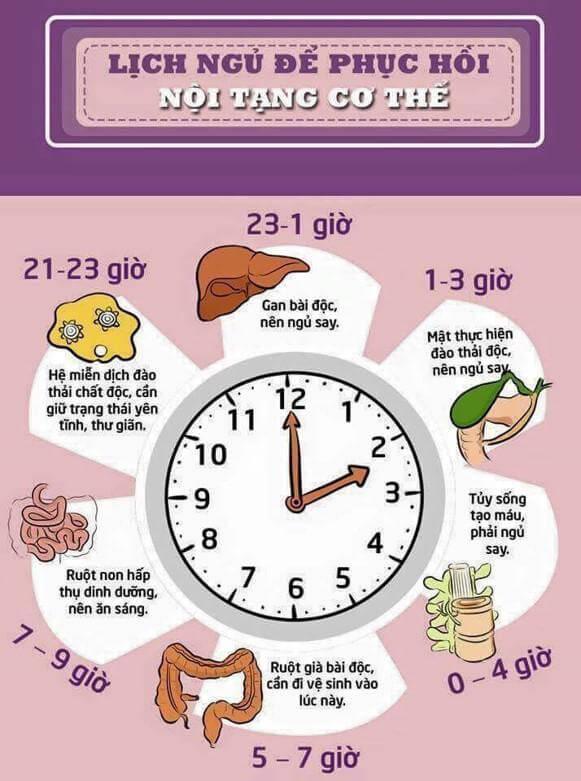 Phương pháp chữa mất ngủ bằng đông y